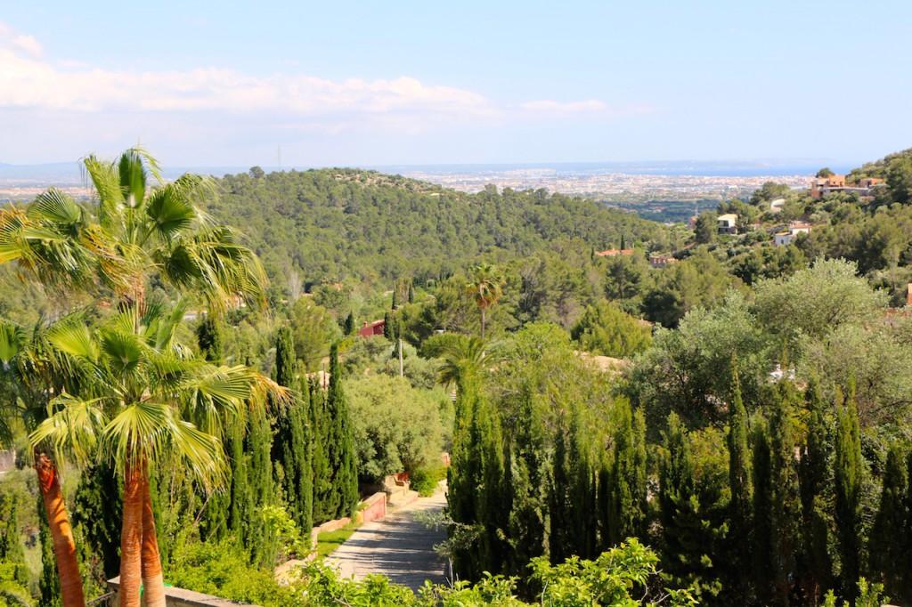 Villa_Vegana_Mallorca13